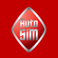 Auto-SIM