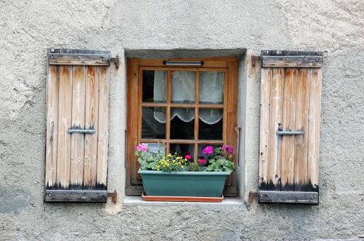 Cvijeće oko kuće  - Page 2 12459868