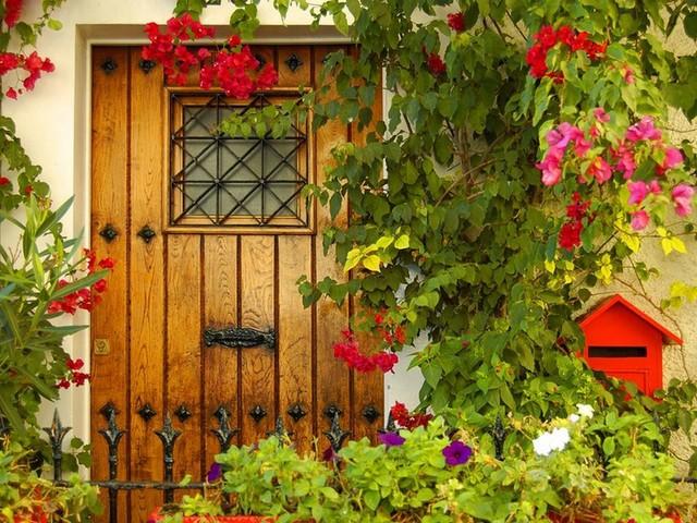 Cvijeće oko kuće  - Page 2 12701623