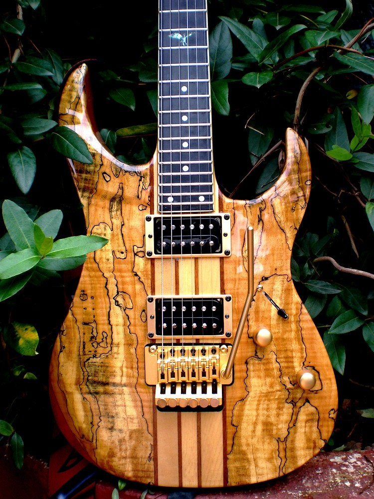 What do you guys think of chapman guitars page 2 i really love it just found some pics that were up here on the forum before cheapraybanclubmaster Image collections