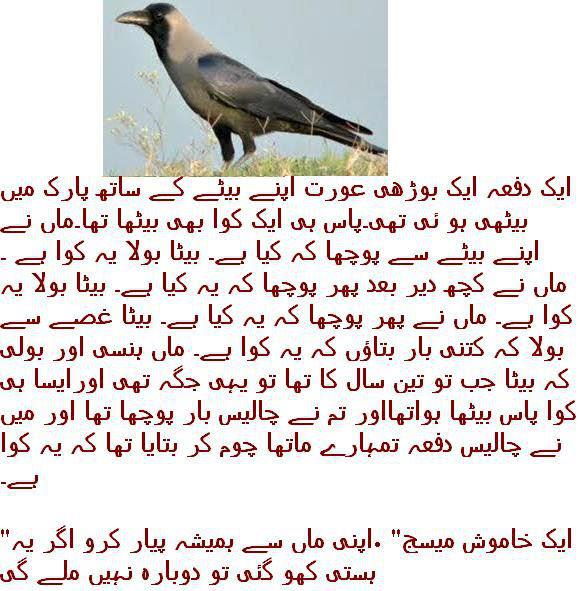 8756858 - Maah ki Shafqat